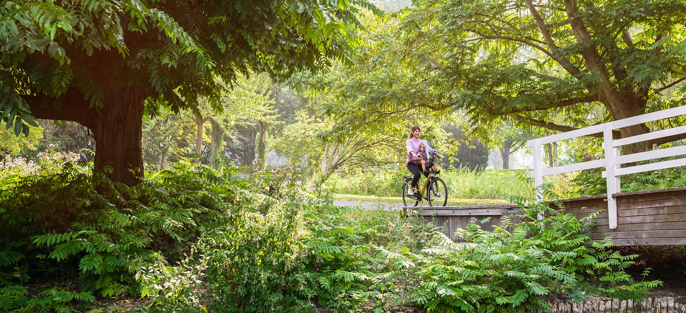 Aankoopadvies - Welke elektrische fiets past bij u?