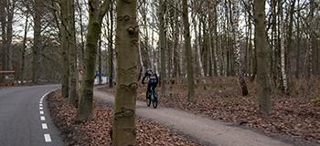 Fietsroute rondom Amersfoort en Den Treek met veel bossen